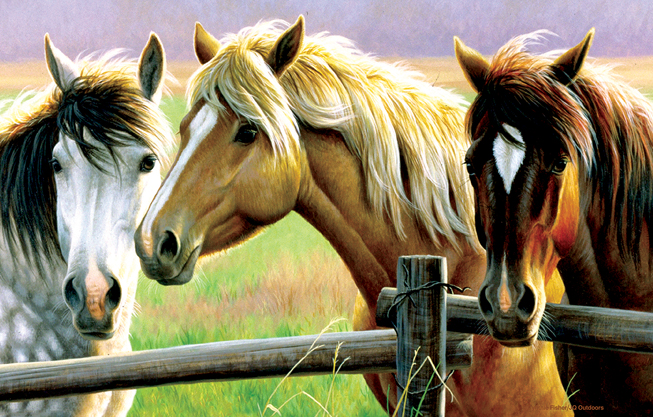 cynthie-fisher-horse-fence