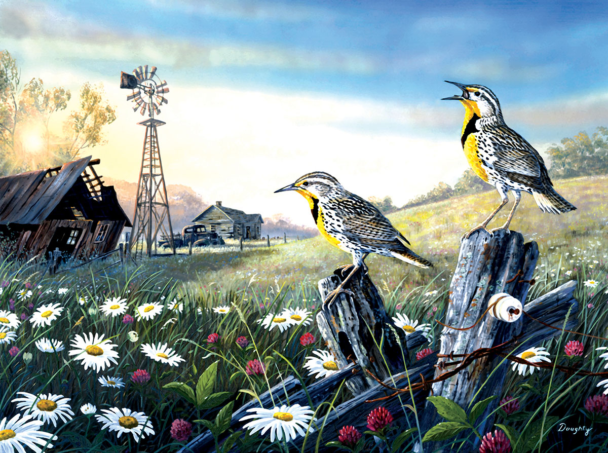 terry-doughty-meadow-outpost