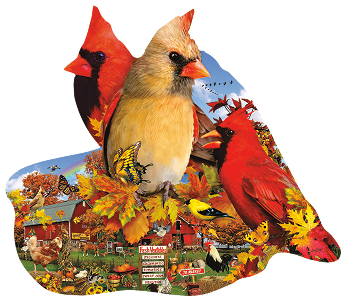 lori-schory-fall-cardinals