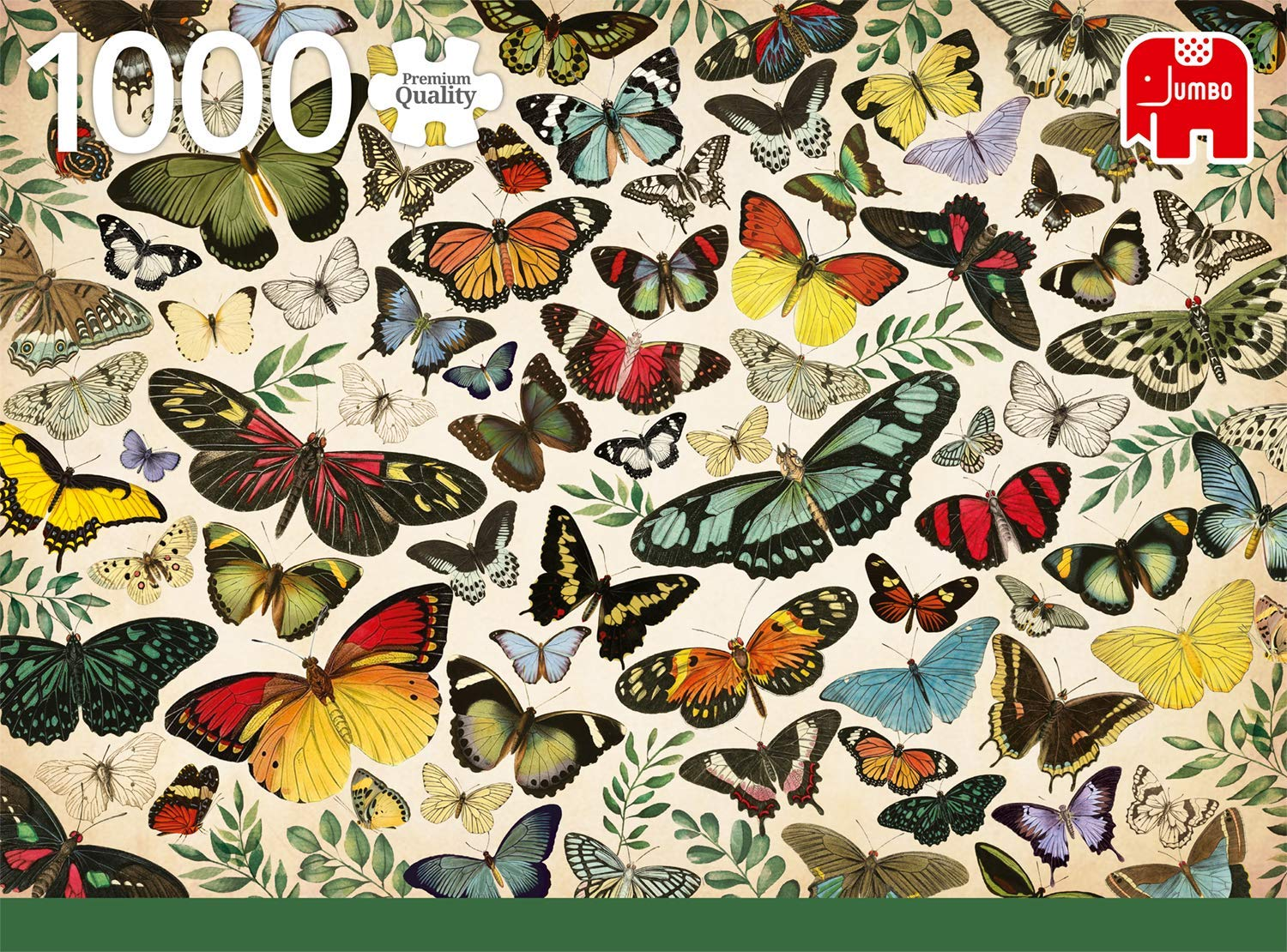 butterfly-poster