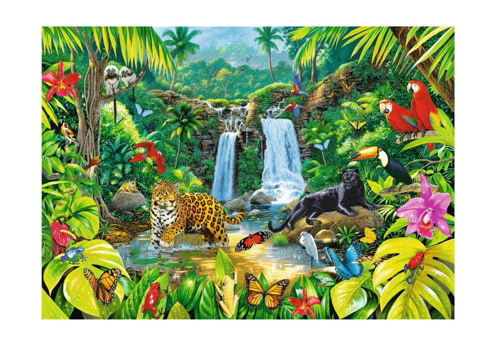 foret-tropicale