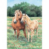 Puzzle  Otter-House-Puzzle-73335 Mother & Foal