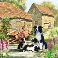 Puzzle  Otter-House-Puzzle-73339 Border Collie Barn
