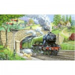 Puzzle  The-House-of-Puzzles-1448 Pièces XXL - Train Spotting
