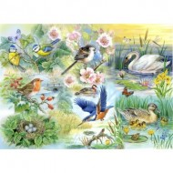 Puzzle  The-House-of-Puzzles-1899 Pièces XXL - Feathered Friends
